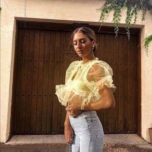 NWT Zara Voluminous Tulle Top blogger favorite